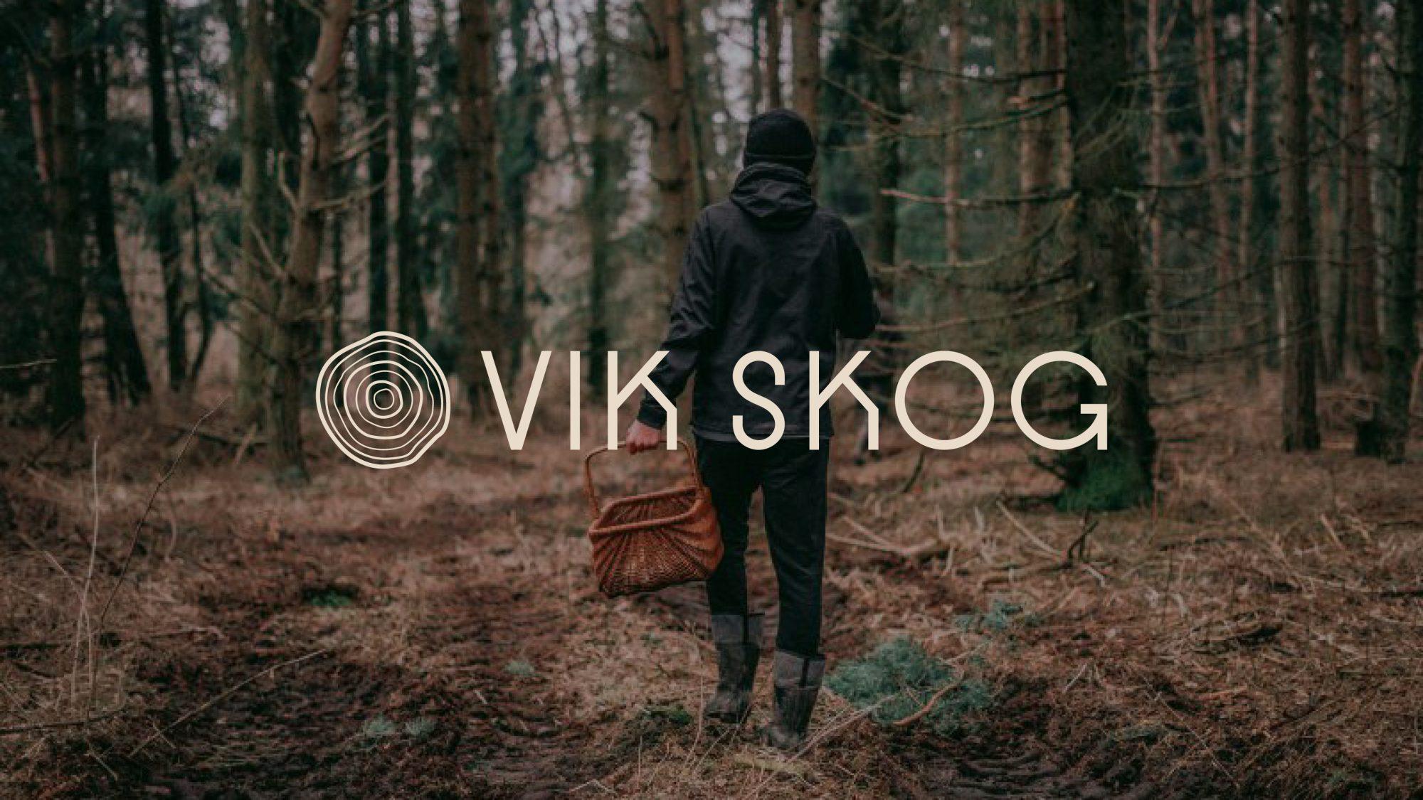 vikskog_3840x21602